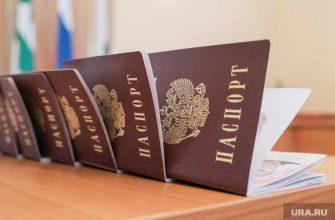 Володин поручил проверить двойное гражданство
