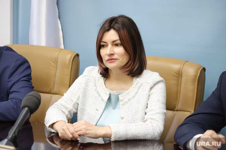 тариф электричество скандал ФАС Гагарина Курган