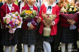 россияне не хотят вести детей в школу