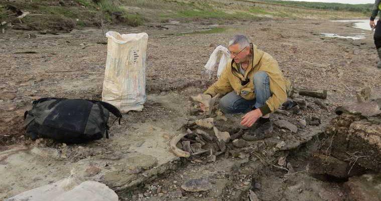 Ученые Екатеринбурга обнаружили кладбище мамонтов