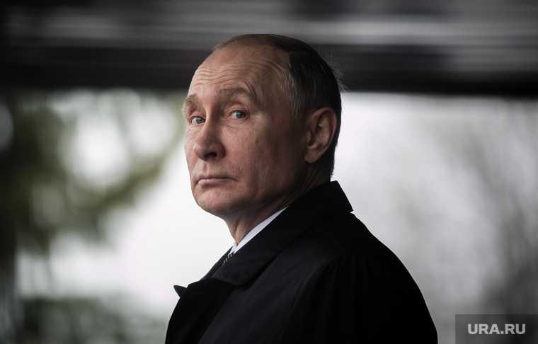 Путин поддержал Кобзева перед выборами Иркутск 2020