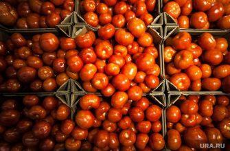 овощи фрукты Азербайджан запрет поставок Россельхознадзор южноамериканская моль
