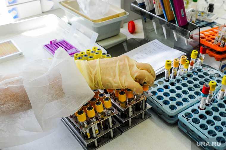 ЯНАО распространение коронавируса смертность статистика