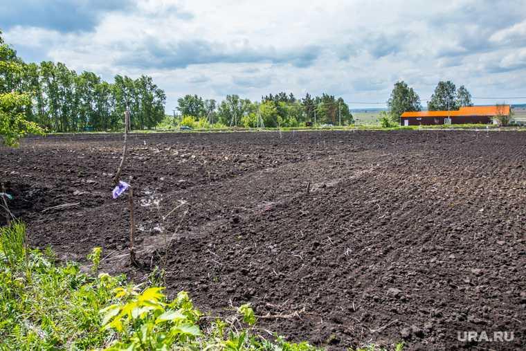 стоимость земли в Свердловской области