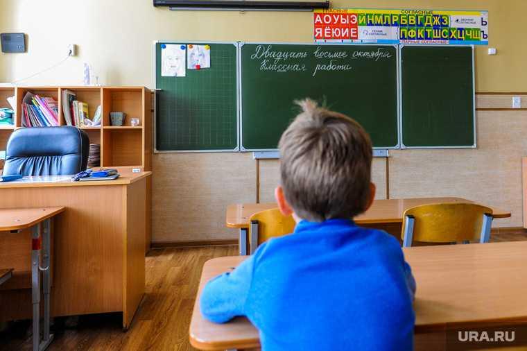 Челябинская область Магнитогорск репетитор дети животные соцсети лицей