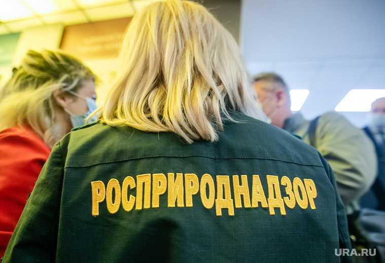 Росприроднадзор Светлана Радионова визит ЯНАО