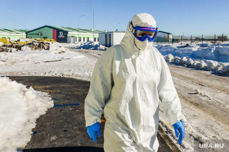 откуда в России новые штаммы коронавируса