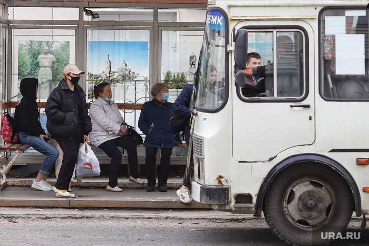 автобусы в шадринске
