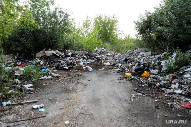 Мэрия в ЯНАО несколько лет не может убрать свалку в черте города