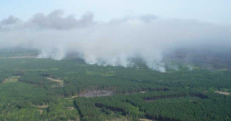 Пермский лесопожарный центр пожары в Пермском крае