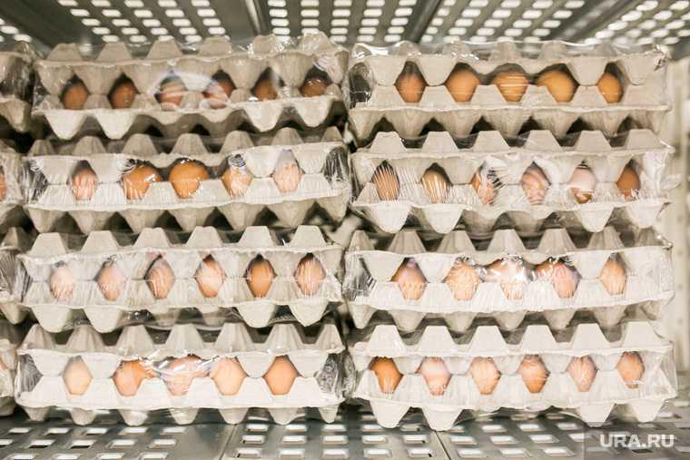 яйца куриные цена снижение дефицит